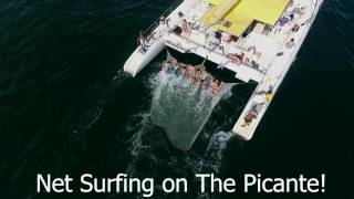Net Surfing - Picante Catamaran