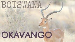 Voyage Afrique du Sud : Okavango et Chobe, Botswana
