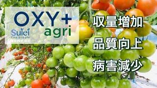 OXY+ agri 農産用酸素水潅水装置