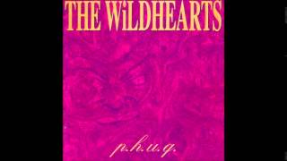 The Wildhearts - P.H.U.Q. (Full Album)