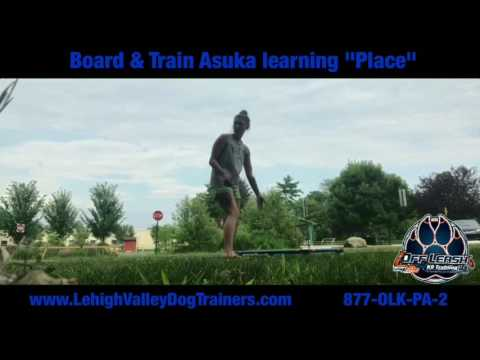 "Asuka learning the ""Place"" Command 