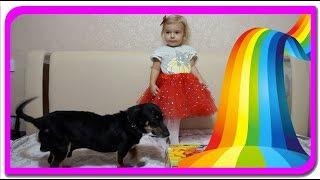 TOBY invata culorile  Anabella Show