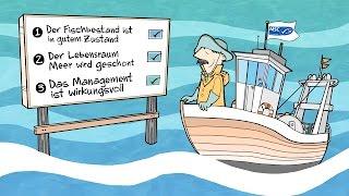 Eine Fischerei darf ihren Fang nur dann mit dem MSC-Siegel kennzeic...