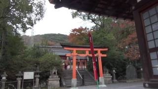 20161130宇治神社のキレッキレ紅葉02・拝殿(桐原殿)(2016 Uji Shrine's autumn leaves02)20161130161222