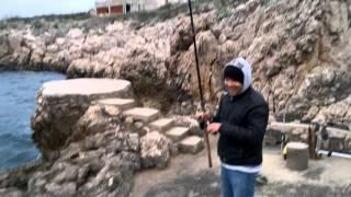 Repeat youtube video Komarča 0,8 kg Dubrovnik 2012 ribolov