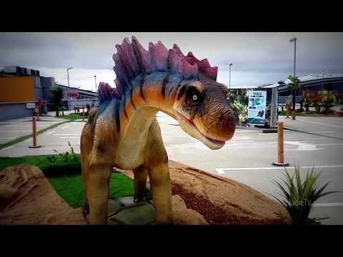 Amargasaurus dinosaur