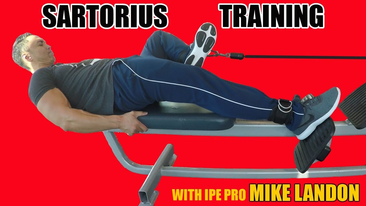 Sartorius Muscle Training With Coach Mike Part 3 Youtube