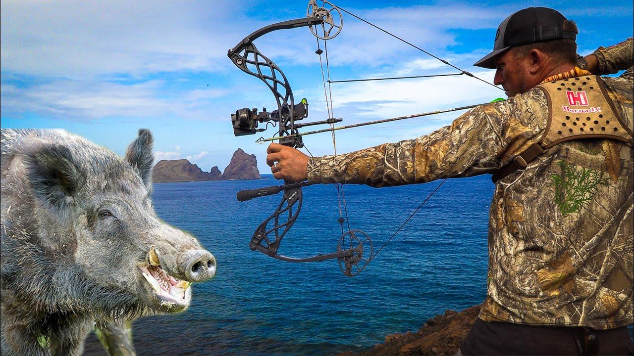 MASSIVE WILD COW & BOAR *Archery Hunt* {Catch Clean Cook} Pagan, Northern Mariana Islands