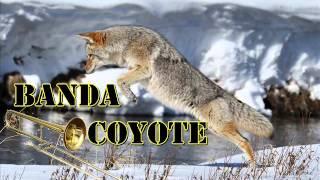 Reproche de un hijo - Banda Coyote