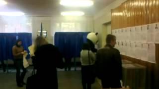 Панда голосует на выборах в Верховную Раду