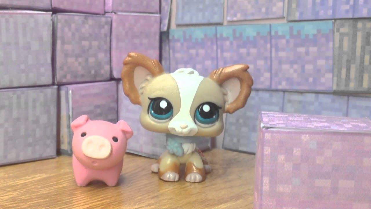 Littlest Pet Shop Videot