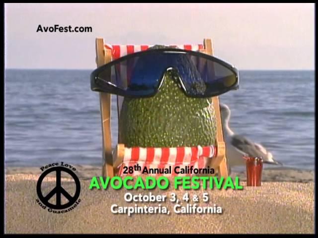 Festival TV Ad