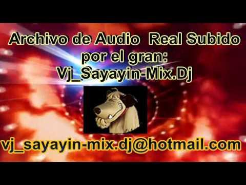 chicha madre Canela Radio.Corp(Vj_Sayayin-Mix.Dj)