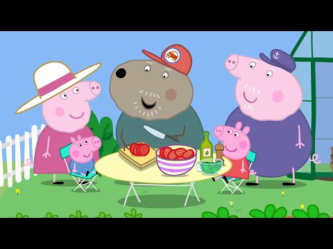 Download Peppa Pig Greenhouse Mp3 Mkv Mp4 Youtube To Mp3