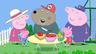 Peppa Pig Full Episodes - Grandpa Pig's Greenhouse - Cartoons for Children