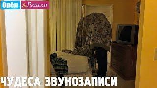 Леся Никитюк начитывает выпуск! Орёл и Решка. Рай и Ад