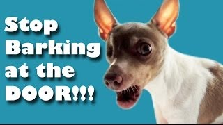 STOP barking at the door!