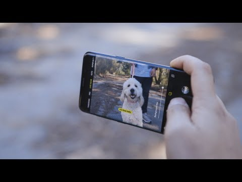 Samsung Galaxy S9 + Live Focus | How To Take Dog Portraits