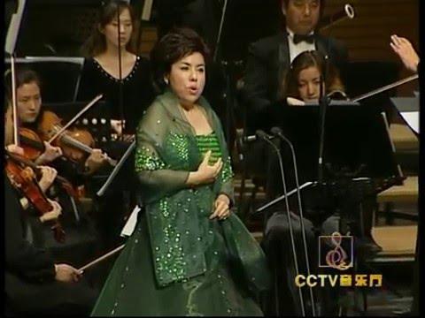 Dilbèr - Beijing Concert (2006) (Dilber Yunus)