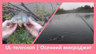 Промозглый осеннний микроджиг на малой реке