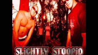 Slightly Stoopid- Officer