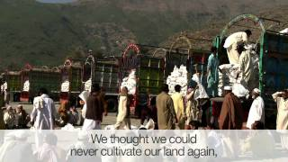 North-west Pakistan: flood-affected farmers rush to plant before winter