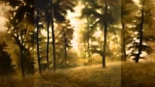 "Hugo Alfvén: Swedish Rhapsody Nr.1, op.19 ""Midsommarvaka"""