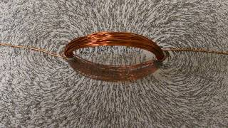 Iron filings are used to visualize the magnetic fields generated by...