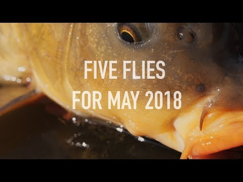 Five Flies For May 2018 - Fly Fishing Denver