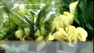 Служба доставки цветов  и подарков Повод найдется(Служба доставки цветов и подарков