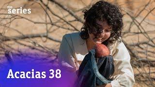 Acacias 38: Blanca da a luz a un niño #Acacias741   RTVE Series