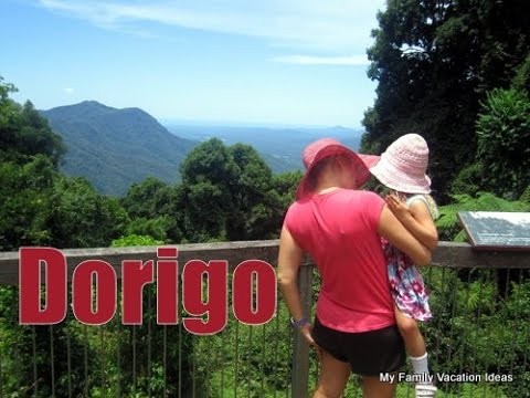 Dorrigo NSW Australia Waterfall Way - dorrigo