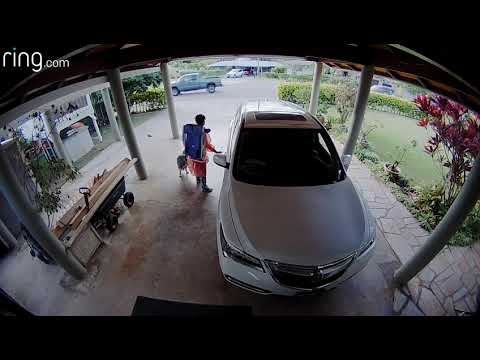 Perry & The Posse - CAUGHT ON TAPE: Car Stolen in Kailua!