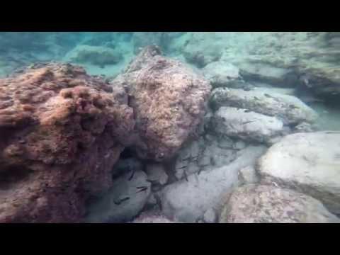Naqoura South Lebanon Under Water Montage