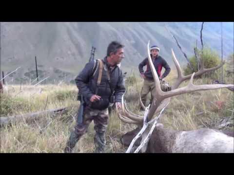 Chasse Maral Et Ibex - Kazakhstan - DHD Laika Voyages