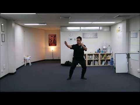 Wu Style Tai Chi Chuan 108 Movements Standard Form 85 To 96