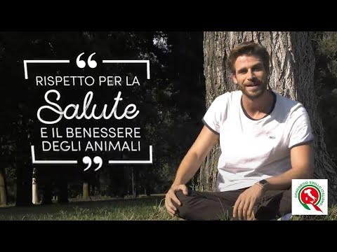 Consorzio Sigillo Italiano