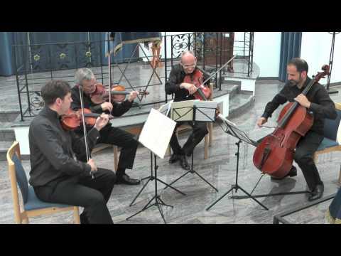 Fröhlicher Schneider - Nodelman Quartett
