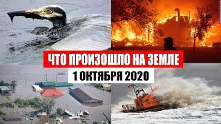 Катаклизмы за день 1 октября 2020 | месть природы,изменение климата,событие дня, в мире,боль земли
