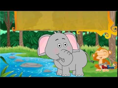 Buku Cerita Sang Gajah Dan Sang Monyet Youtube