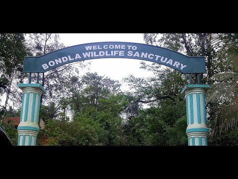 Bondla Wildlife Sanctuary Goa : Goa to Bondla Zoo Road Trip, Goa Zoo