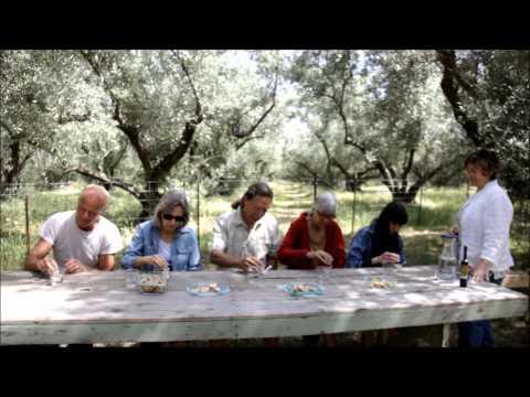 Berkeley Olive Grove Organic Blood Orange Olive Oil Tasting