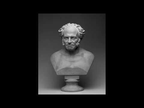Артур Шопенгауэр —  О ничтожестве и горестях жизни