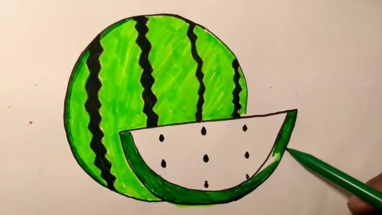 Watermelon Menggambar Dan Mewarnai Gambar Semangka Youtube
