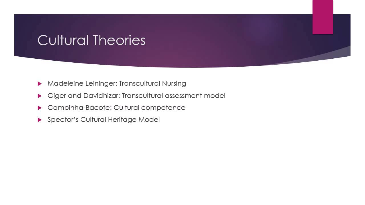 cultural diversity pp 2