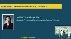 Aging Brains, Stress and Alzheimer's: A Correlation? | Kellie Tamashiro, Ph.D.