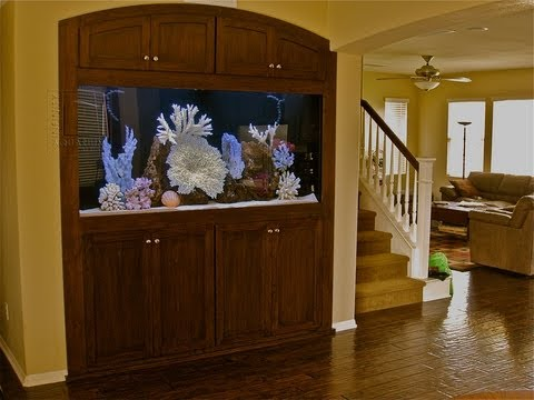 Custom Aquarium Installation San Diego