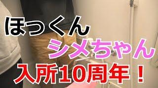ツイッター! http://twitter.com/h_c_r_n チャンネル登録お待ちしており...
