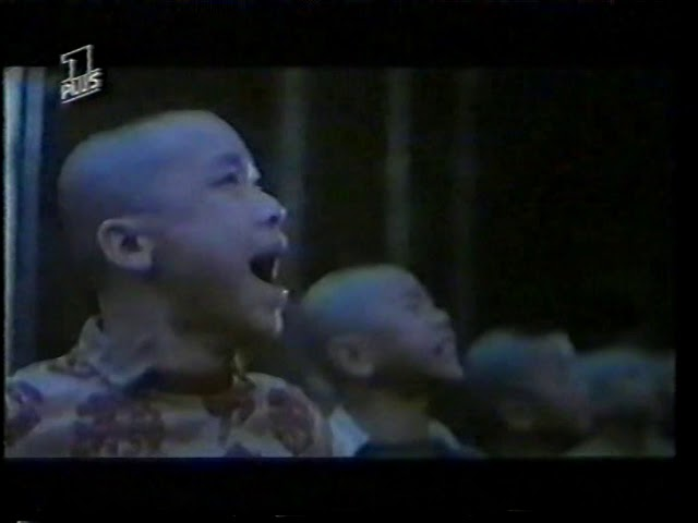 Leben hinter Masken (1988)  Painded Skin - Sammo Hung - extrem Rar german TV Version (Opening only)