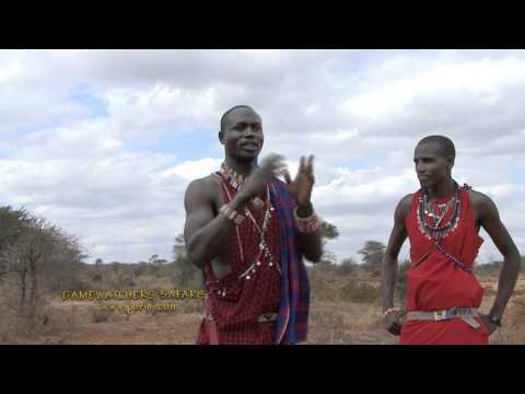 Maasai Guide Explains How Porini Helps Both the Maasai Community and Wildlife